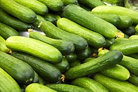 Close-up of freshly picked green slicing cucumbers (Cucumis sativus) on display at an outdoor market, Byward Market, Ottawa, Ontario, Canada.
