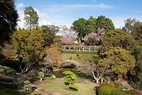 Springtime in the Japanese Gardens at Huntington Gardens and Library, San Marino, California, USA