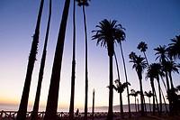 Sunset at Palisades Park, Santa Monica, City of Los Angeles, California, USA.
