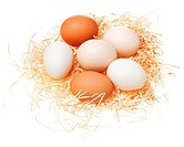 Eggs in straw nest isolated on white background.