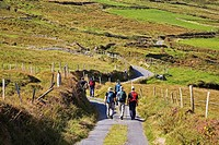 Hikers on Boreen, Near Allihies, Beara Peninsula, County Cork, Ireland.