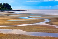 Low tide at a beach in Parksville, Vancouver Island, British Columbia, Canada.