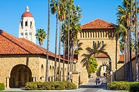 Stanford University campus with Hoover Tower and arches and palm trees leading to quad.