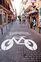 Bike trail sign, Malasaña.
