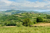 Curone valley landscape, Piedmont, Italy, relaxing country landscape with in the green smooth hills near Tortona, shot in springtime.