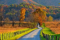 Autumn colour in Cades Cove- Hyatt Lane, Great Smoky Mountains NP, Tennessee, USA.