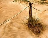 Dunes, Canet de Berenguer Beach, Valencia, Spain.