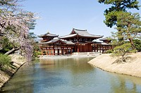 Byodo in, Uji, Near Kyoto, Japan, Temple, Morning sunshine, View across small lake, Horizontal, Cherry blossom.
