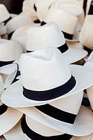 Panama White hats for Sale Toulon.