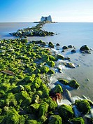St. John Tower ruins during low tide at Alfacs bay. Ebro River Delta Natural Park, Tarragona province, Catalonia, Spain.