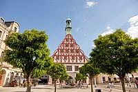 theatre Gewandhaus on the main market in Zwickau, Saxony, Germany, Europe.