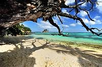 Beach on Island Mahé, Anse Royale, Seychelles.