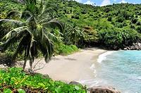 Anse Major, Beach on Mahé, Seychelles.