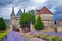 france, loire castles : talcy castle & park.