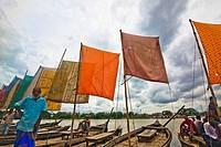 Sail boat in Banglades.