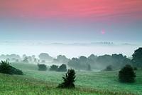 Foggy sunrise, Hill of Uisneach, County Westmeath, Ireland.