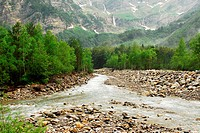 Cinca river, waterfalls and riparian wood with mist, Pineta valley, Ordesa and Monte Perdido National Park, Pyrenees Range, province of Huesca, Aragon...