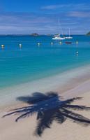 Shadow of palm tree on beach on the island of St Maarten.