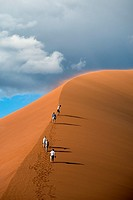Telephoto image of four young tourists climbing up the spine of dune 45. Sossusvlei, Namib Naukluft National Park, Namibia.