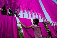 A boy drying dyed cloths under sun,he is helping family business.