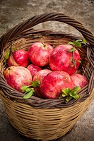 A basket with pomegranates at Pournaria village. Arcadia, Peloponnese, Greece.