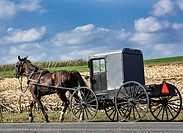 Amish buggy, Leacock, Lancaster County, Pennsylvania, USA.