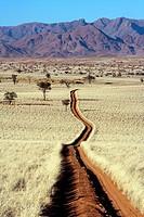 Road in Wolwedans - NamibRand Nature Reserve - Hardap Region, Namibia, Africa.