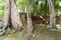 Angkor Thom, UNESCO World Heritage Site, Angkor, Siem Reap,Cambodia, Indochina, Southeast Asia, Asia.
