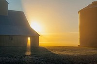 Sun rays shine through barn window on foggy morning in western Iowa.