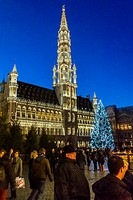 Brussels, Belgium, Outside, Street Scene, Christmas Tree Decorations in City Center, The Grand Place