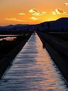 Irrigation channel at dusk. Ebro River Delta Natural Park, Tarragona province, Catalonia, Spain.