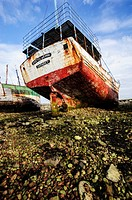 Shipwreck at boat cemetery, Camaret sur Mer, Crozon Peninsula, Finistere, Brittany, France.