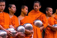 Asia. Thailand, Chiang Mai. Young Buddhist monks on their morning procession for offerings of food near a monastery in the Huay Kaew area.