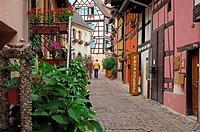 Eguisheim, Alsace Wine Route, Haut-Rhin, Alsace, France, Europe.