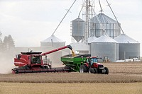 Combine harvesting soybeans in southern Minnesota.
