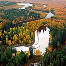 Autumn in Siberia. Top view.