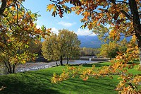 Oak trees show Autumn colours at Las Presillas river pools on Lozoya river, near El Paular at Madrilenian side of Sierra de Guadarrama mountain range.