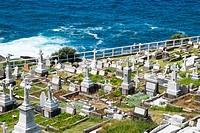 Waverley Cemetery in Bronte, Sydney