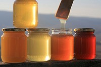 Italian Honey, Tuscany, Europe.