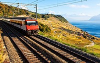 A Train Passing Through the World Heritage Area of Lavaux, Switzerland.