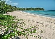 Beach, Samana, Dominican Republic.