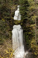 Curley Creek Falls is found deep in a national forest in the Pacific Northwest.
