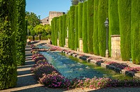 Gardens of the Alcazar of the Christian Kings, Cordoba. Andalusia, Spain.