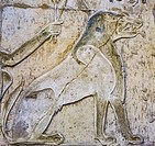 "UNESCO World Heritage, Thebes in Egypt, ptolemaic temple of Deir el Medineh. Ammit, """"the devourer"""" or the """"soul-eater"""" is a composite animal with ..."