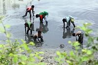 Dhaka 23 April 2015. Local people catching fish in a river at. savar in Dhaka. photo by Palash khan.