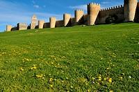 Avila walls.