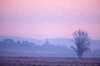 Landscape at dawn in the Laguna de Gallocanta wildlife reserve, Zaragoza province, Aragon, Spain