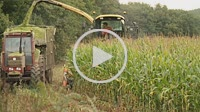 Harvesting or threshing machine, cutting and crushed cereal. In this case Corn. In the picture the combine harvester working in tandem with tractor an...