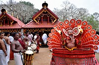 India, Kerala, Kannur, Karuvalli Kavu, Dance of Kutti Theyyam. .