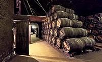 """""""""""""""""""""""El calado"""""""" cellar at R. Lopez de Heredia Viña Tondonia winery. Haro. La Rioja. Spain."""